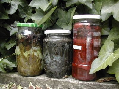 three jars with natural dyestuffs and fabric in liquid sitting in the sun